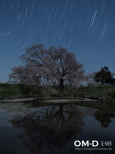 E-M5_12mm_F2.5_15秒_ISO200_120枚_浅井の一本桜TRat2.jpg